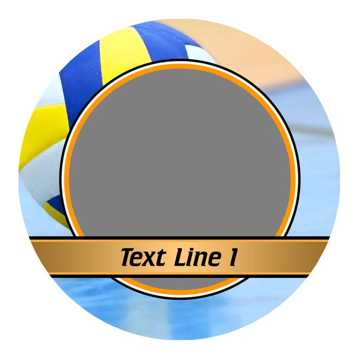 Volleyball (w/text)
